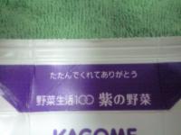 090216_kagome